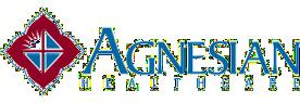 Agnesian HealthCare logo and link to their website